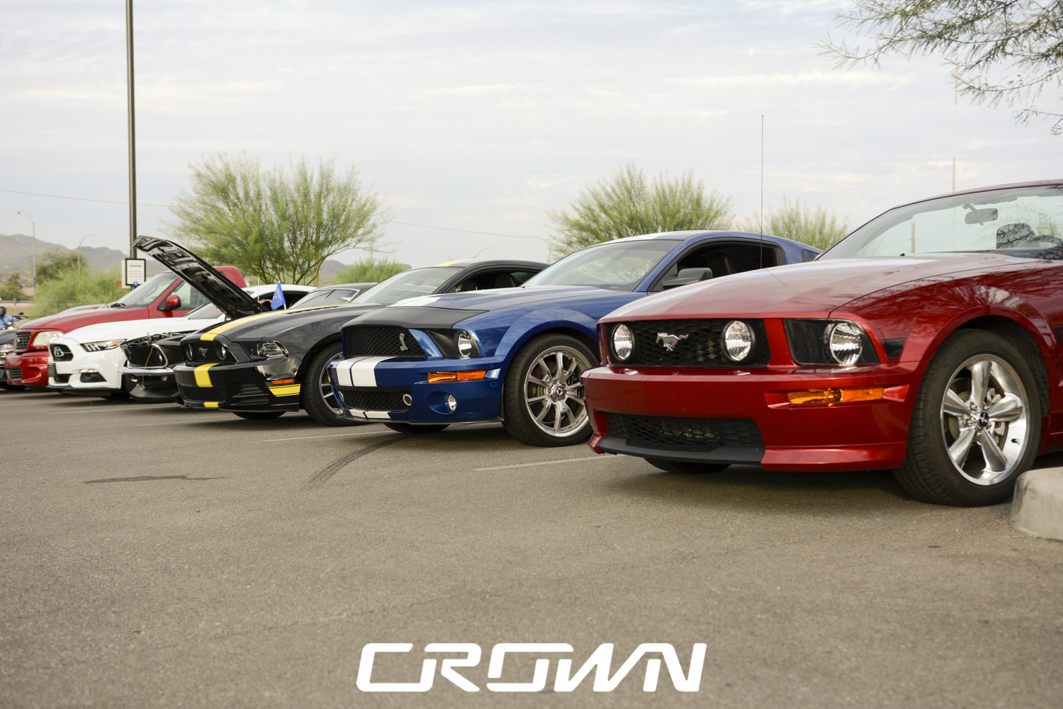 Southern Arizona Mustang Club at topgolf Tucson